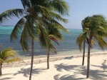 Beach at Little Cayman Beach Resort